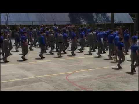 Vereador Patrik visita Guarda Mirim em Curitiba - Cidade Portal