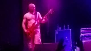 SCHISM (Tool tribute band) - Jambi [guitar solo] - Jannus Landing, St. Pete, FL - July 2016