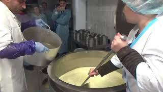 Оборудование мини сыроварни  - технология производства сыра