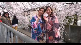 PD017 Puru - Koyuki (06R Remix) [Pineapple Digital]