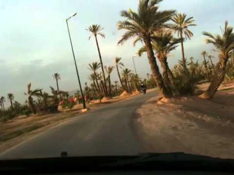 Cruising through an oasis in Marrakech.