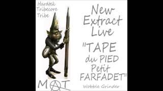 tape du pied petit farfadet hardtek tribe tribecore LIVE