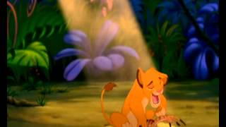 ♪♫Lion King-Waka waka (This time for Africa)♪♫