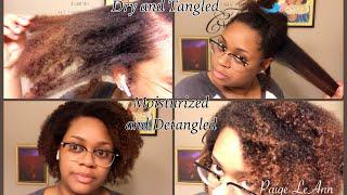 Keeping My Hair Moisturized And Detangled Has Been A Struggle | Cowash + Prepoo= Extreme Moisture