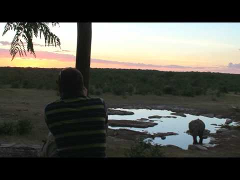 Sunset over South Africian waterhole with elephant