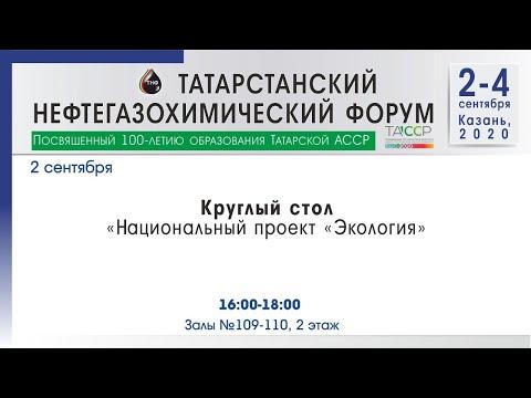 Прямая трансляция круглого стола «Национальный проект «Экология»