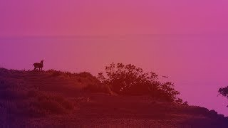 Koda - Limnos [Silk Music]