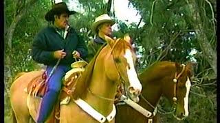 Alberto Vázquez & Vicente Fernández - No volveré  - SIEMPRE EN DOMINGO