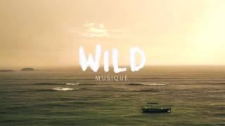 Antarctica Feat. Redhead Gang - Wild Musique