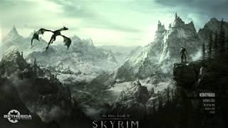"Skyrim main menu music: ""Celtic Music - Freedom"""