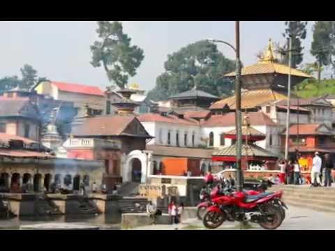 Swami Sarasvati's Yoga & Ayurveda Tour of India / Nepal 2011