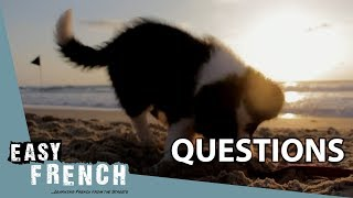 Questions | Super Easy French 39 width=