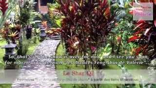 Émission 6 : Le Shar Chi #LAFSV (Spécial Bali)
