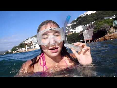 Giant Starfish Snorkeling in Knysna, South Africa