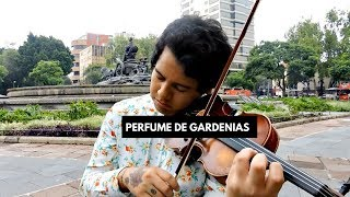 ♛PERFUME DE GARDENIAS   GERRYBOY   VIOLÍN COVER