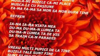 FLORIN PURICE SI VALY PITIC-MUSCA-MI BUZELE