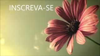 Música sem direitos autorais - Water Lily