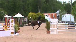 Sassafras C at blue Rock Classic 2013 JrAO Jumpers Saturday