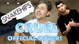 Snakehips - Cruel Official ft. ZAYN COVER