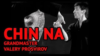 Qinna is martial arts techniques to control or lock opponent's joints (2009)