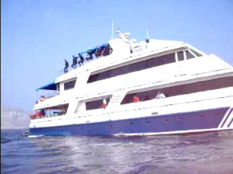 Jumping off the boat while diving in the Galapagos Islands off the coast of Ecuador