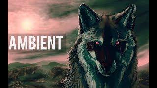 Koda - The Wolf Below