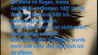 ~Generic - Bis zum Schluss (Cover) (feat. Silbermond) ~
