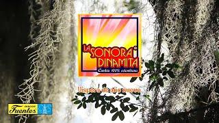Víspera De Año Nuevo - La Sonora Dinamita / Discos Fuentes [Audio]