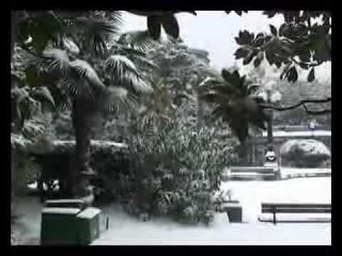 Снегопад в Ялте. 29.01.2012. – Heavy snowfall in Yalta.