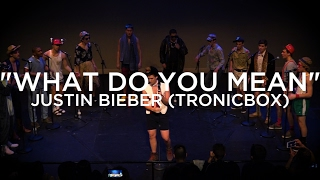 What Do You Mean It's 1985 (opb. Justin Bieber x TRONICBOX) - The Pennchants