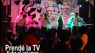 promo festivales SONIDO MALAGUA canal 8 La Paloma Rocha