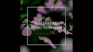 Suedhead - Morrissey Cover - Agnusllurea