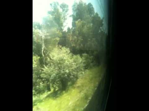 SNTF Algeria: Automotrice leaving Boumerdes.MOV