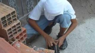 O MEU GURI - Chico Buarque - Prof. Tiago Ortaet VIDEOCLIP 7ªD