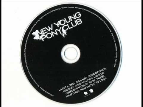 new-young-pony-club-we-want-to-bingophobic