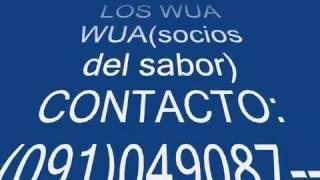 lOS WUA WUA Gotitas de Lluvia  099479050 091049087