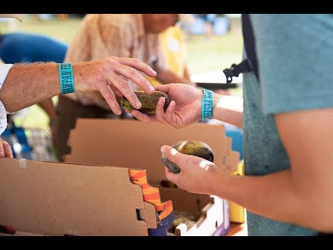 2018 marked the 20th anniversary of the Paw Paw Festival, the yearly celebration of pawpaw fruit held at Lake Snowden in Albany. Paw pawfarmers, vendors and enthusiasts gather for the celebration to enjoy live music, unique food and more. (Video and editing: Alex Penrose // Thumbnail photo: McKinley Law)