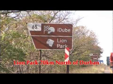 South Africa/Safari.Lion Park (1)