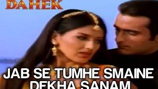 Jab Se Tumhe Maine Dekha Sanam - Dahek - Udit Narayan & Anuradha Paudwal