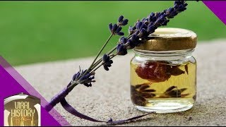 How to make lavender oil - the medieval way! *Unintentional ASMR*