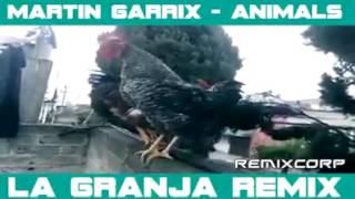 DJ Martin Garrix - ANIMALS (AYAM PUNYA CERITA) LA GRANJA REMIX