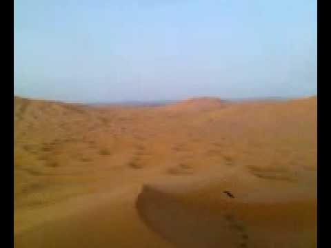 Top of dune