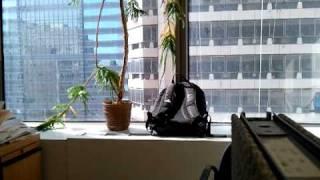 My noisy office