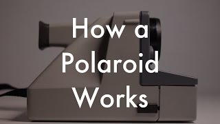 How Does a Polaroid Work?