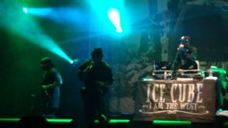 Ice Cube live @ House of Blues-You Know How We Do It-Las Vegas, NV 2011