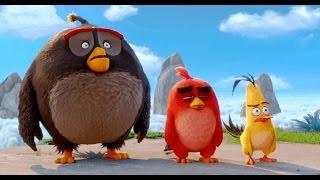 Angry Birds - O Filme (Trailer DUBLADO)