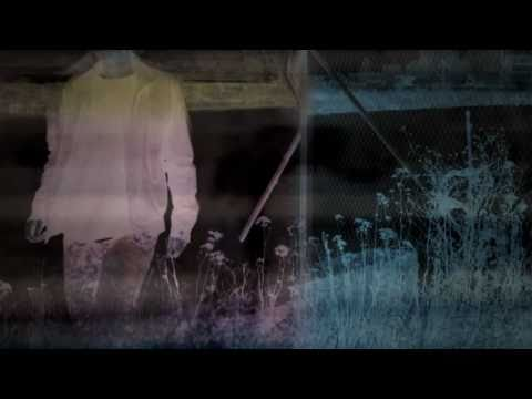 the-radio-dept-never-follow-suit-official-promo-music-video-theradiodeptvideos