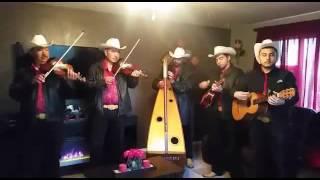 Conjunto de arpa los vaqueros de michoacan 30 cartas