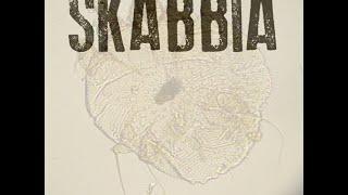 SKABBIA  iron lion  zion  (BOB MARLEY)