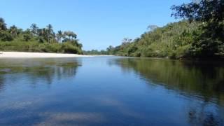 Río, Mar, y Gr4v3d4D- Pa' ti- Bomba estéreo